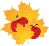 Herbstblatt und -apfel Stockfotografie