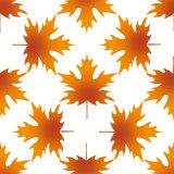 Herbstblattahorn, nahtloses Muster Lizenzfreies Stockfoto