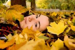 Herbstblattfall Stockfoto