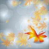 Herbstblattfall, Naturhintergrund Lizenzfreies Stockfoto