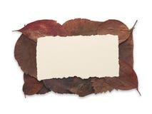 Herbstblattfeld mit unbelegtem Papier Stockfotos