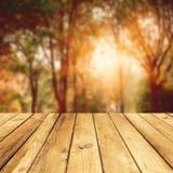 Herbstblätter und nahtloses Muster des Baums Lizenzfreies Stockbild