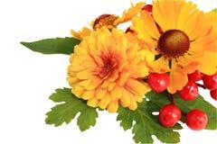 Herbstblumen Lizenzfreie Stockbilder
