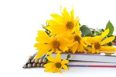 Herbstblumen mit Buch und Bleistiften Lizenzfreie Stockfotos