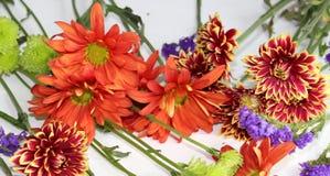 Herbstblumenanordnung auf weißem Hintergrund lizenzfreies stockfoto
