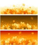 Herbstblumenfahnen stock abbildung