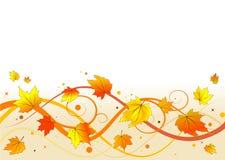 Herbstblumenhintergrund Stockbild