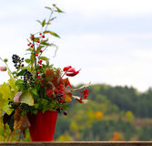 Herbstblumenstrauß lizenzfreie stockbilder