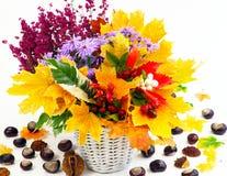 Herbstblumenstrauß Lizenzfreie Stockfotos