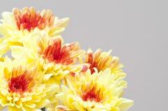 Herbstblumenstrauß: gelbe Chrysanthemen Stockbild