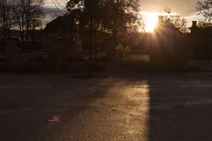 Herbstboulevard des Sonnenuntergangs im November stockbilder