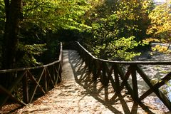 Herbstbrücke Stockfotografie