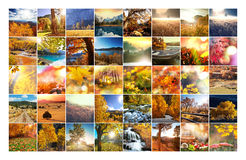 Herbstcollage Lizenzfreies Stockfoto