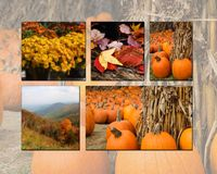Herbst-Collage Stockbilder