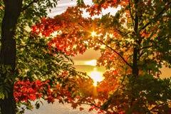 Herbstdämmerung Stockfotografie