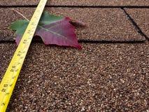 Herbstdach stockbild