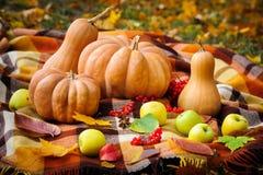 Herbstdanksagungsstillleben Lizenzfreies Stockbild