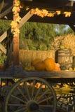 Herbstdekoration Lizenzfreies Stockbild