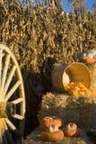 Herbstdekoration Lizenzfreie Stockfotos