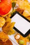 Herbstdekoration Lizenzfreies Stockfoto
