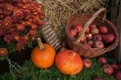 Herbstdekorations-, Rote und Grüneäpfel in einem Weidenkorb auf Stroh, Kürbisen, Kürbis, Heideblumen und Chrysanthemenblumen Stockfotografie