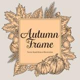 Herbstdesign für Grußkarte Weinleseerntefest-Herbstelemente Hand gezeichneter Vektorgekritzelrahmen mit Blättern, Eichel, clov Stockbild