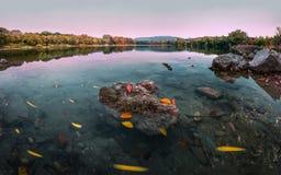 Herbstdrehbeschleunigung stockfotos