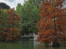Herbstdruck im Rückzug Lizenzfreie Stockbilder