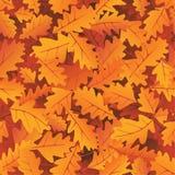 Herbsteichenblätter Stockfoto
