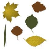 Herbstelemente für Auslegung Stockbild