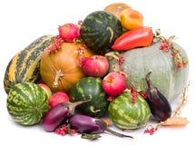Herbsternte lizenzfreie stockbilder