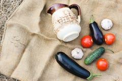 Herbsternte des Gemüses Begriffserntegraphik mit verschiedenem Gemüse auf dem Feld Stockbild