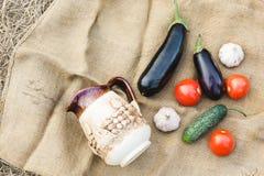 Herbsternte des Gemüses Begriffserntegraphik mit verschiedenem Gemüse auf dem Feld Lizenzfreies Stockbild
