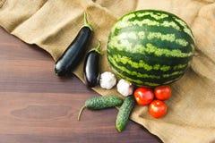 Herbsternte des Gemüses und der Früchte Begriffserntegraphik mit verschiedenem Gemüse auf dem Feld Lizenzfreies Stockbild