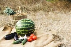 Herbsternte des Gemüses und der Früchte Begriffserntegraphik mit verschiedenem Gemüse auf dem Feld Lizenzfreie Stockfotos