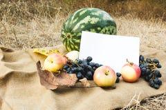 Herbsternte des Gemüses und der Früchte Begriffserntegraphik mit verschiedenem Gemüse auf dem Feld Stockfoto