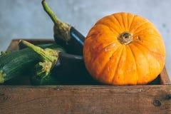 Herbsternte in einer Holzkiste Lizenzfreie Stockfotos