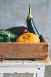 Herbsternte in einer Holzkiste Stockfoto