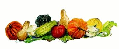 Herbsternte, -kürbise und -kürbis. lizenzfreie abbildung