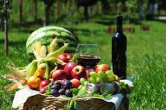 Herbsternte: Saisonfrüchte und Rotwein Lizenzfreie Stockbilder