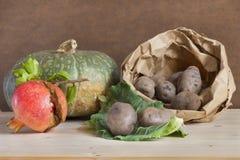Herbsternte vom Gemüsegarten stockfotos
