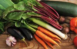 Herbsternte - Zucchini, Aubergine, Zwiebeln, Porrees, rote Rüben, garli Stockfotos