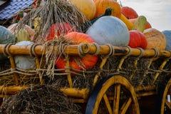Herbsterntefest Hölzerner Warenkorb mit Herbstgemüse Stockfotografie