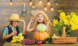 Herbsterntefest Kinderspiel-Gemüsekürbiskohl Kindermädchenjungen-Abnutzungshut feiern Erntefest stockbild