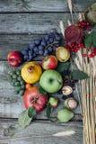 Herbsterntefrüchte Lizenzfreie Stockbilder