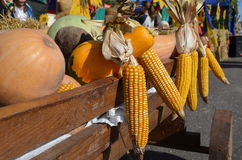 Herbsterntegemüse ein hölzerner Lastwagen Lizenzfreie Stockbilder