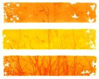 Herbstfahnen Stockbild