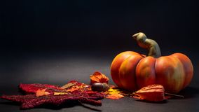 Herbstfall-Dekorationsszene mit künstlichem Kürbis verlässt in der orange Farbe auf schwarzem Hintergrund lizenzfreie stockbilder