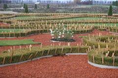 Herbstfallgarten Lizenzfreies Stockfoto