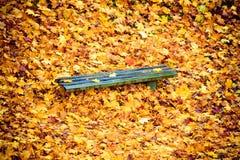 Herbstfalllandschaft Bank und Blätter im Stadtpark Lizenzfreies Stockfoto